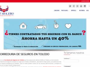 Seguros-en-Toledo-Correduria-de-seguros-Seguros-Ruiz-Molero-Toledo-1024x501
